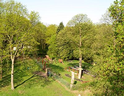 View across Frylands Wood